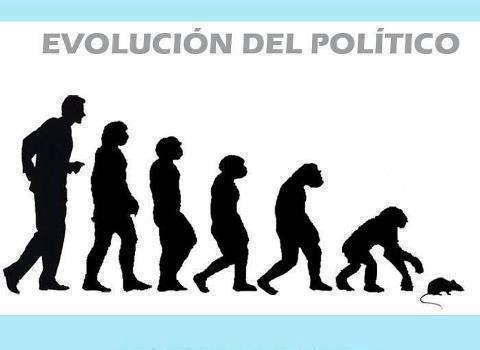 Evolución del Politico